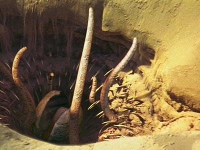 Sarlacc