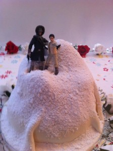 Bowman hothweddingcake