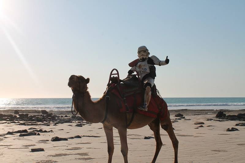 Stormtrooper on a camel.