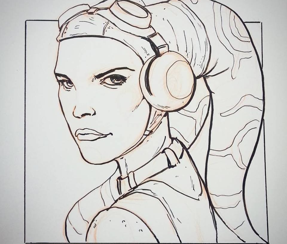 Fully Operational Fandom - Anderson Hera