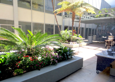 Small outdoor park of the Anaheim Convention Center, site of Star Wars Celebration 2015