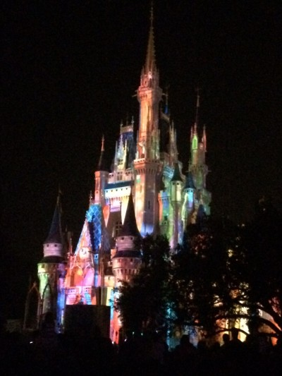 First night at Disney World -- had a great view of Wishes!