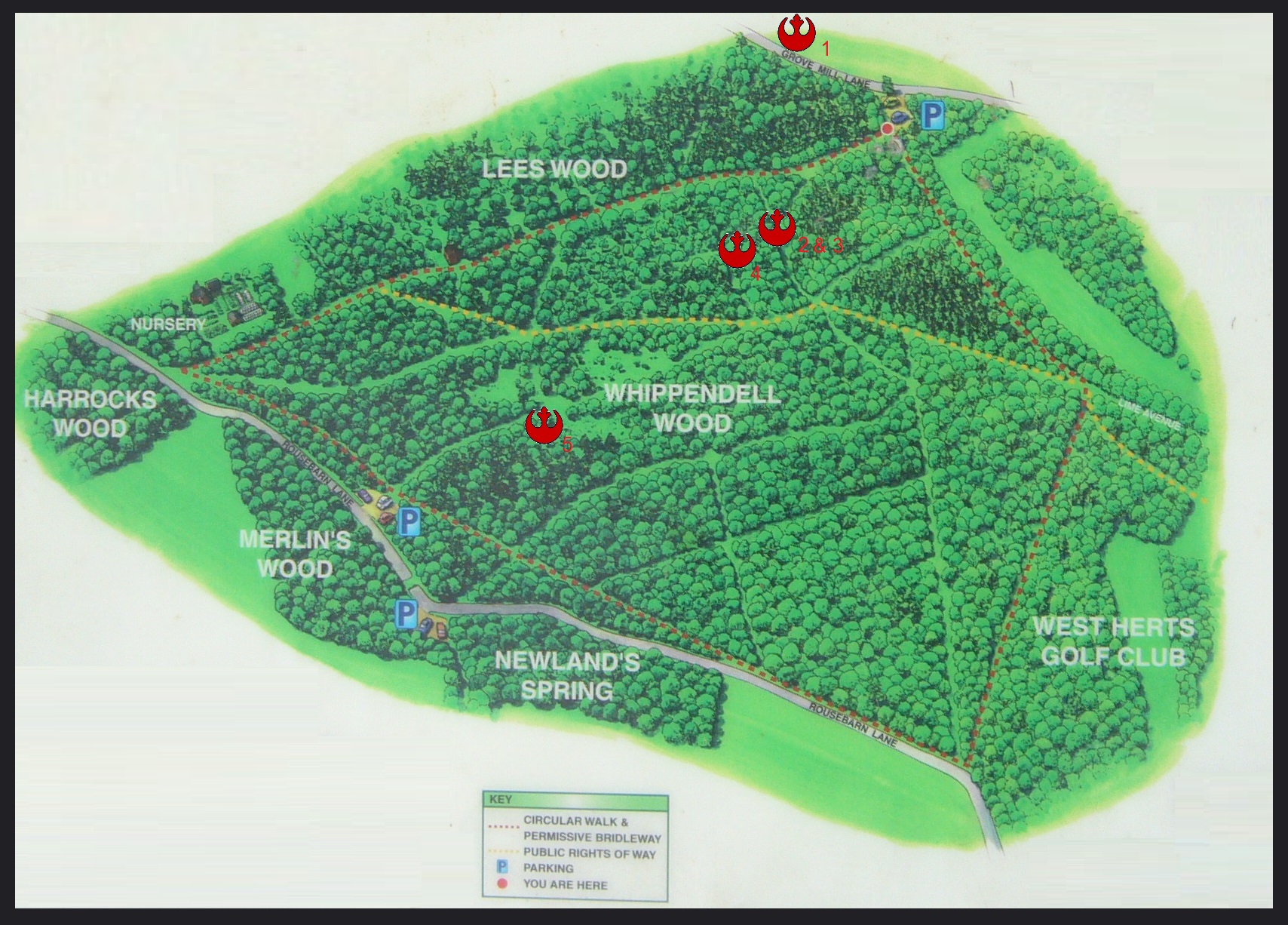 Whippendell Woods map