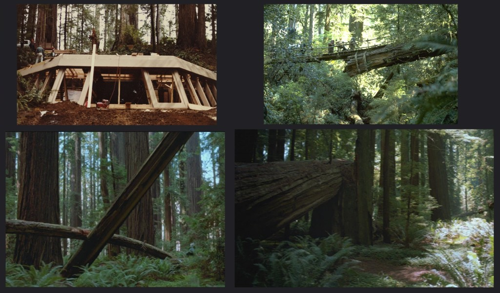 Bunker set under construction, Norman's log and two distinct trees during the speederbike scene