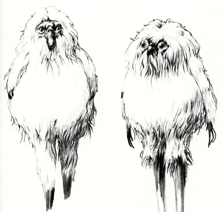 Yuzzum concept art from The Art of Star Wars: Return of the Jedi