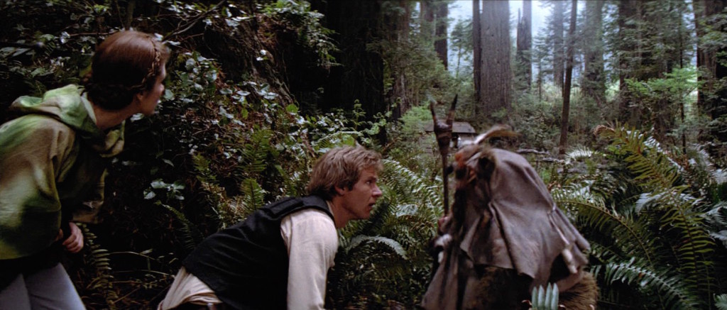 Return of the Jedi - Han overlooking bunker