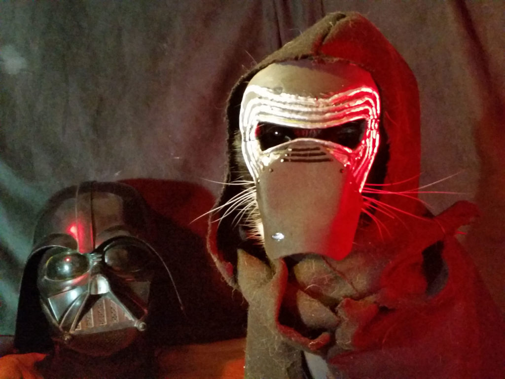 These Pets in Star Wars Costumes Are Ready for Halloween - StarWars.com - 웹