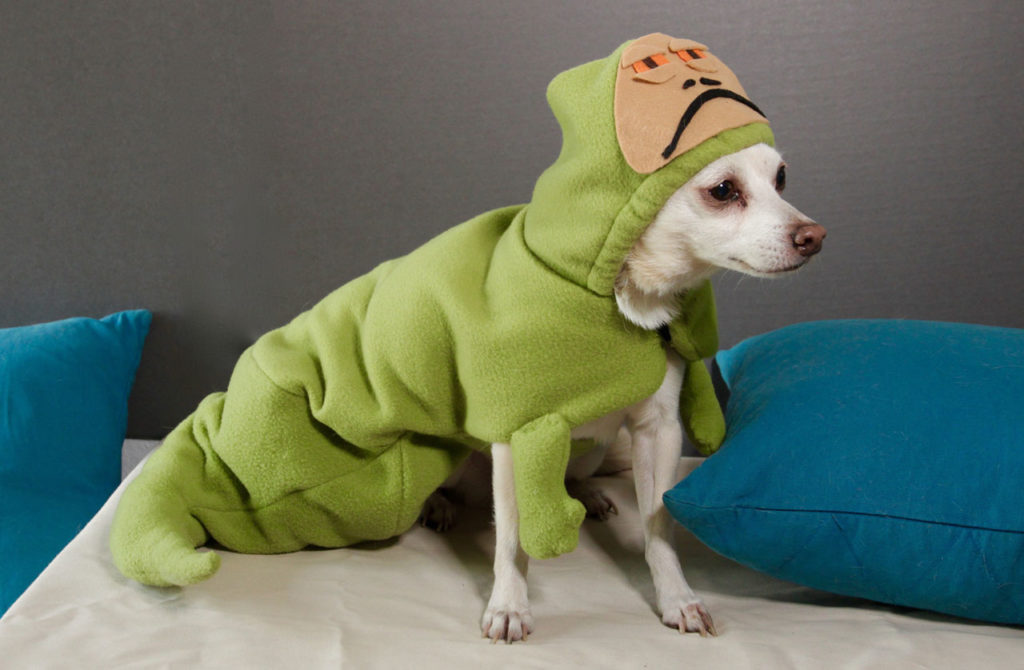 Porg and More DIY Star Wars Pet Costumes for Halloween ... Jabba The Hutt Costume For Dogs
