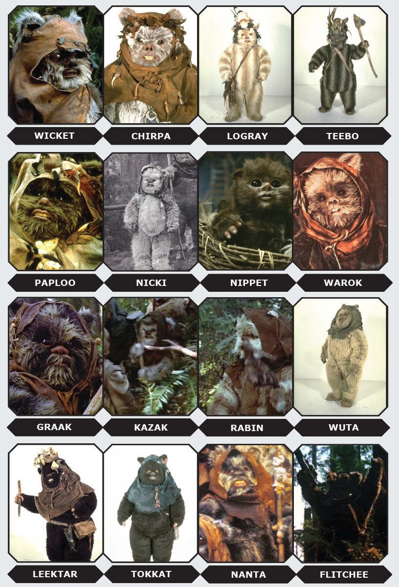 Meet the Ewoks from Endor | StarWars com