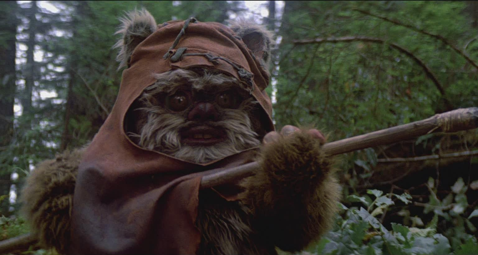 Image result for return of the jedi ewoks