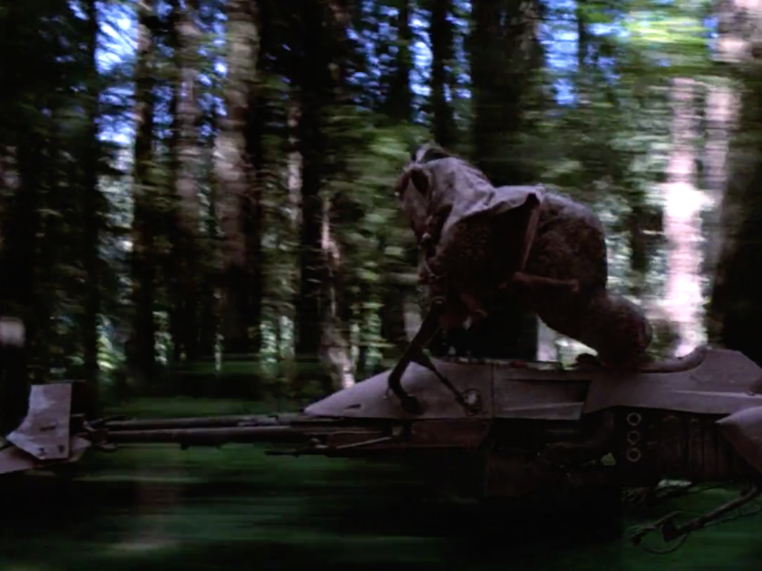 Ewok on speeder bike