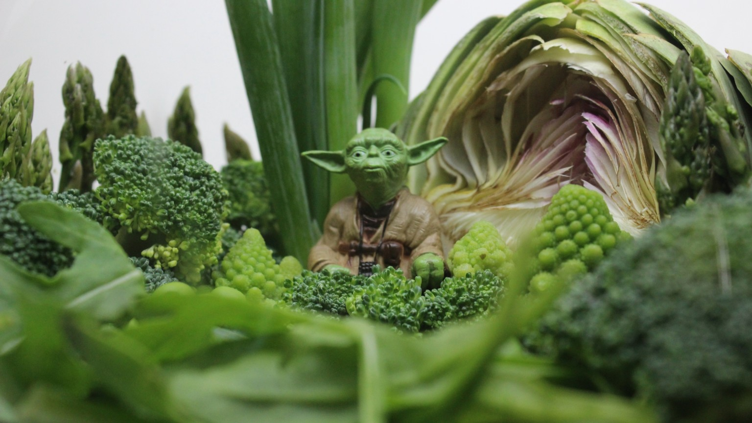 Yoda Vegetable Terrarium