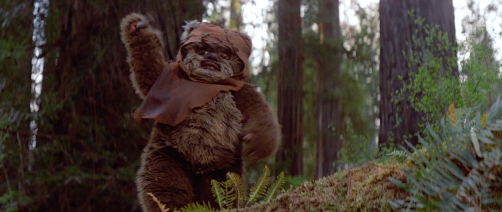 Wicket stands triumphantly in Return of the Jedi.