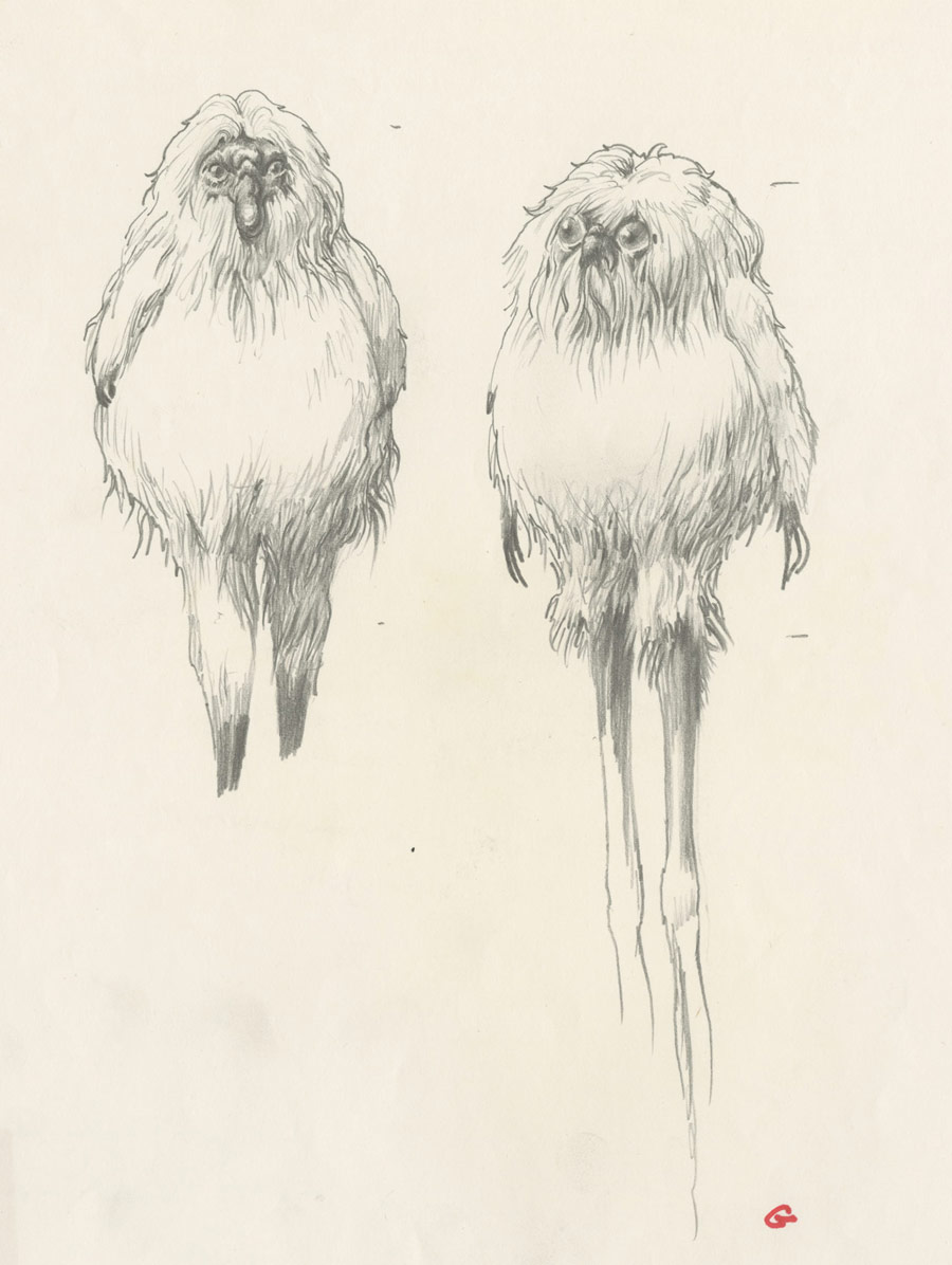 Yoda Character Design : Yoda almost looked like a garden gnome plus more early