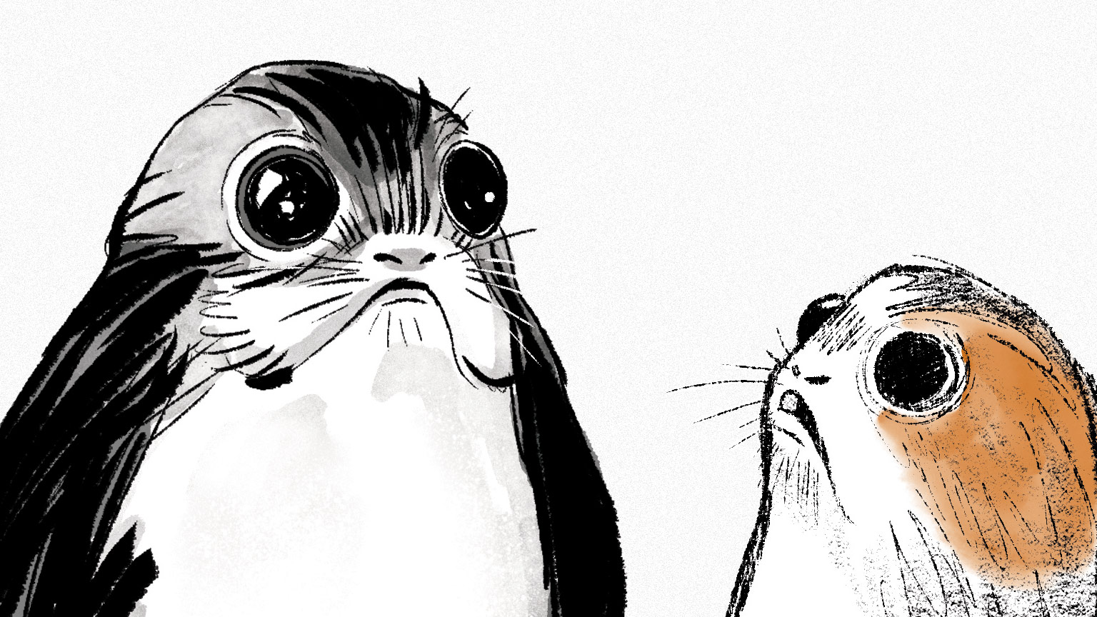 introducing porgs the cute new creatures from star wars