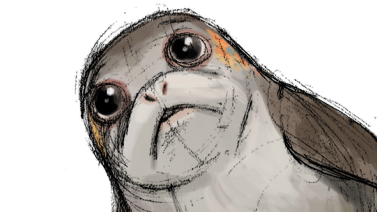 Introducing Porgs, the Cute New Creatures from Star Wars