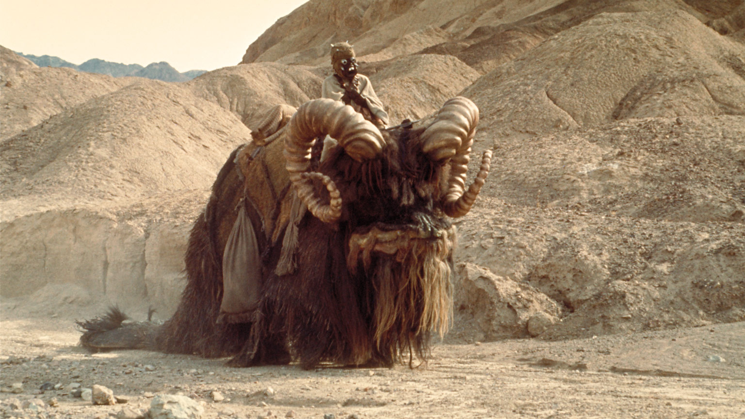 8 Star Wars Creatures We Want To Hitch A Ride On Starwars Com