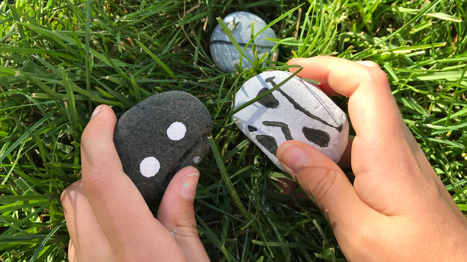 The Time to Paint These Star Wars Rocks is Now | StarWars.com