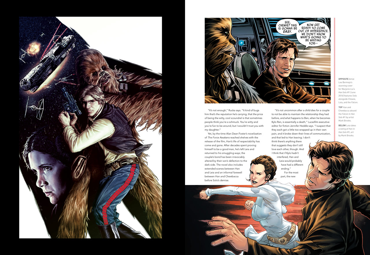 The beautiful star wars icons han solo chronicles the - Vaisseau star wars han solo ...