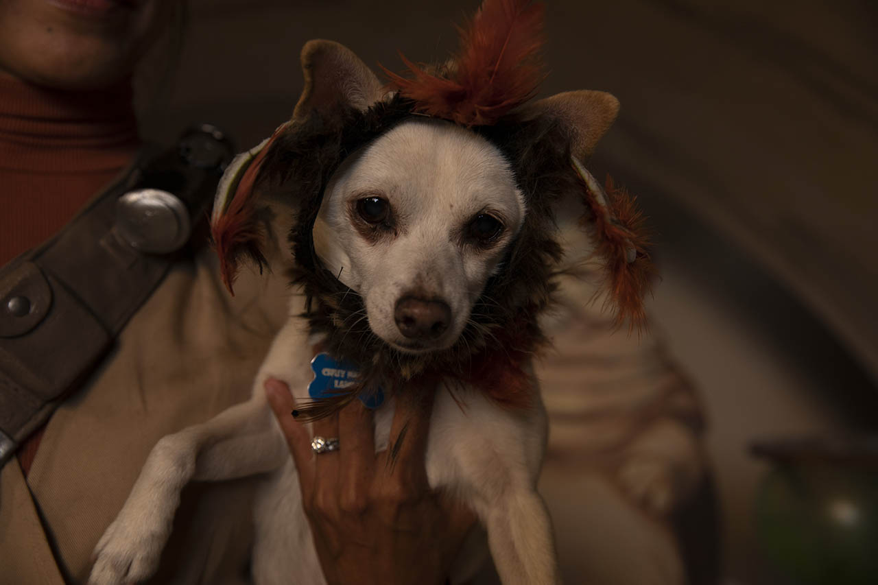 Close-up shot of Chuy dressed as Salacious B. Crumb