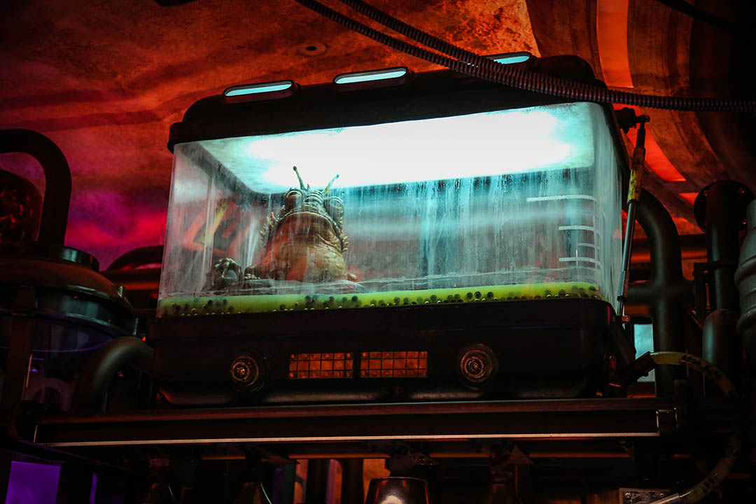 A creature inside Oga's Cantina at Star Wars: Galaxy's Edge.