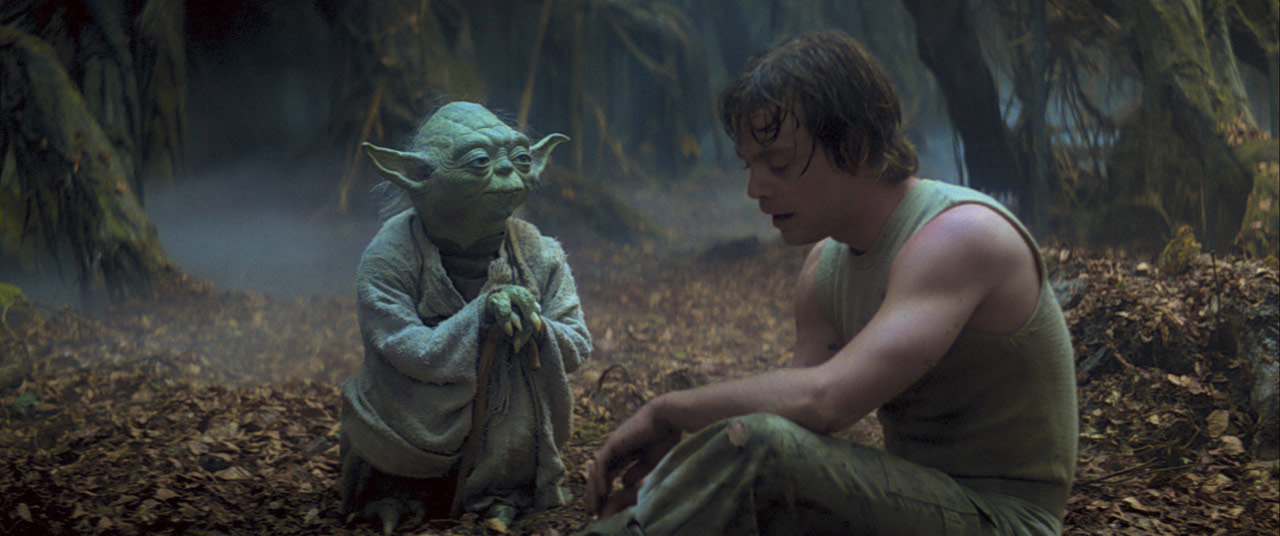 Yoda teaches Luke Skywalker on Dagobah.