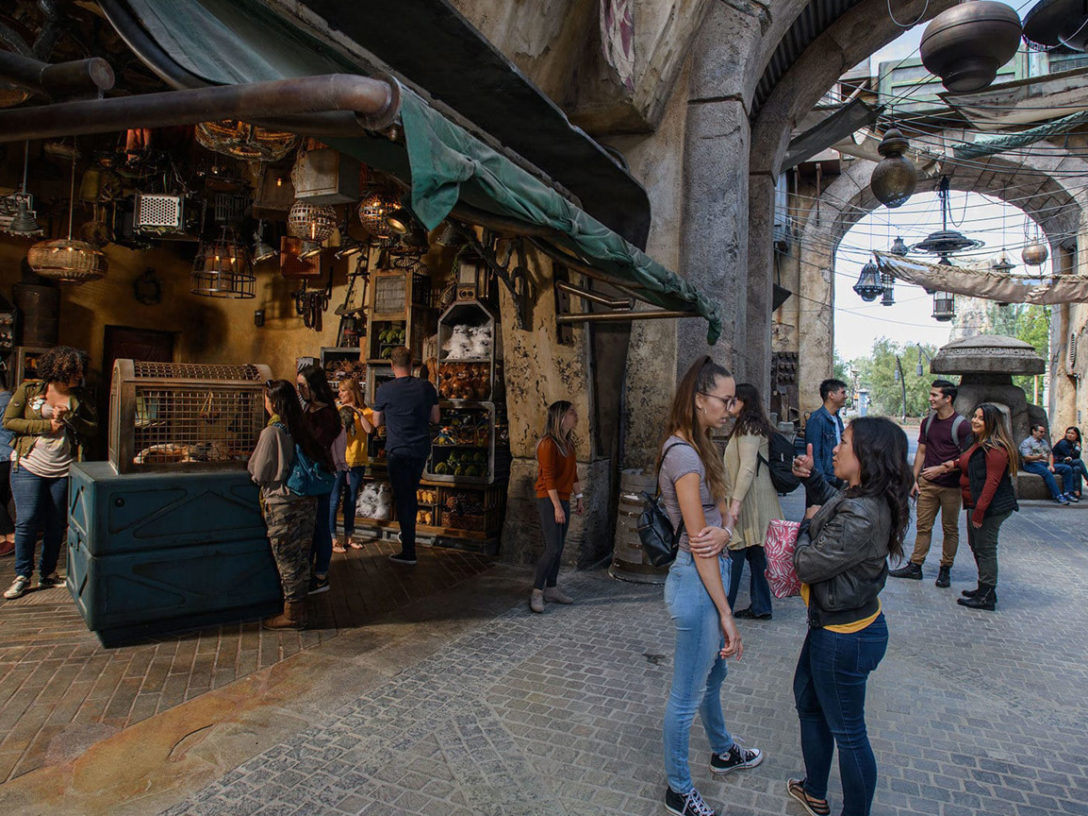 Fans at Star Wars: Galaxy's Edge