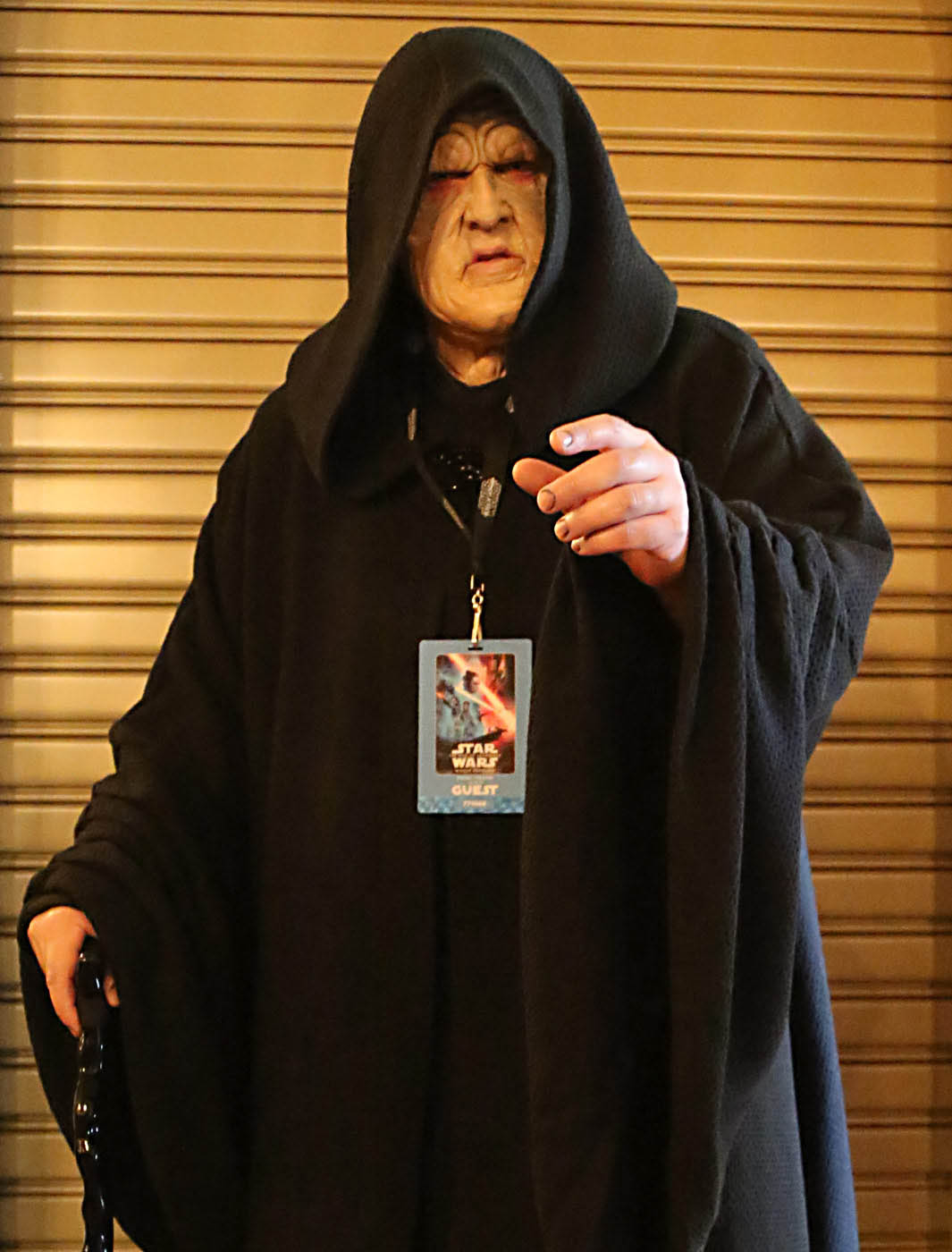 A Emperor Plaptine cosplayer for the premiere of The Rise of Skywalker.