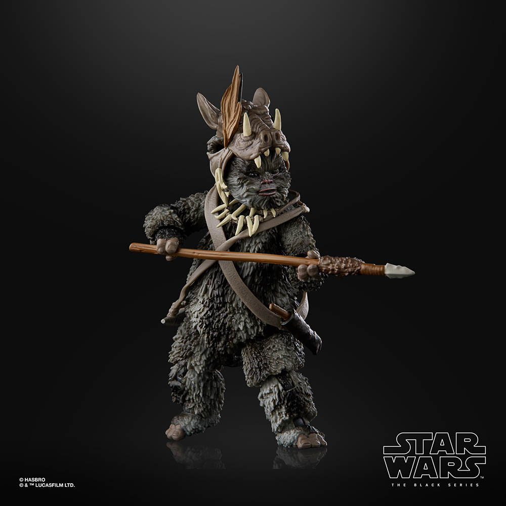 A new Hasbro Black Series Teebo.