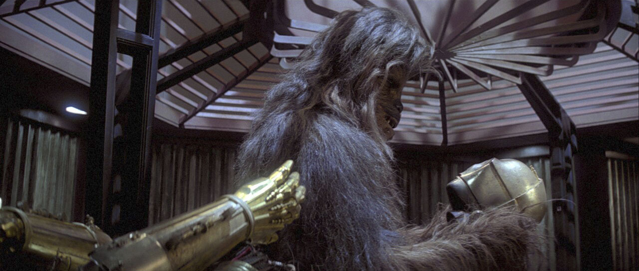 Chewie and C-3PO in The Empire Strikes Back