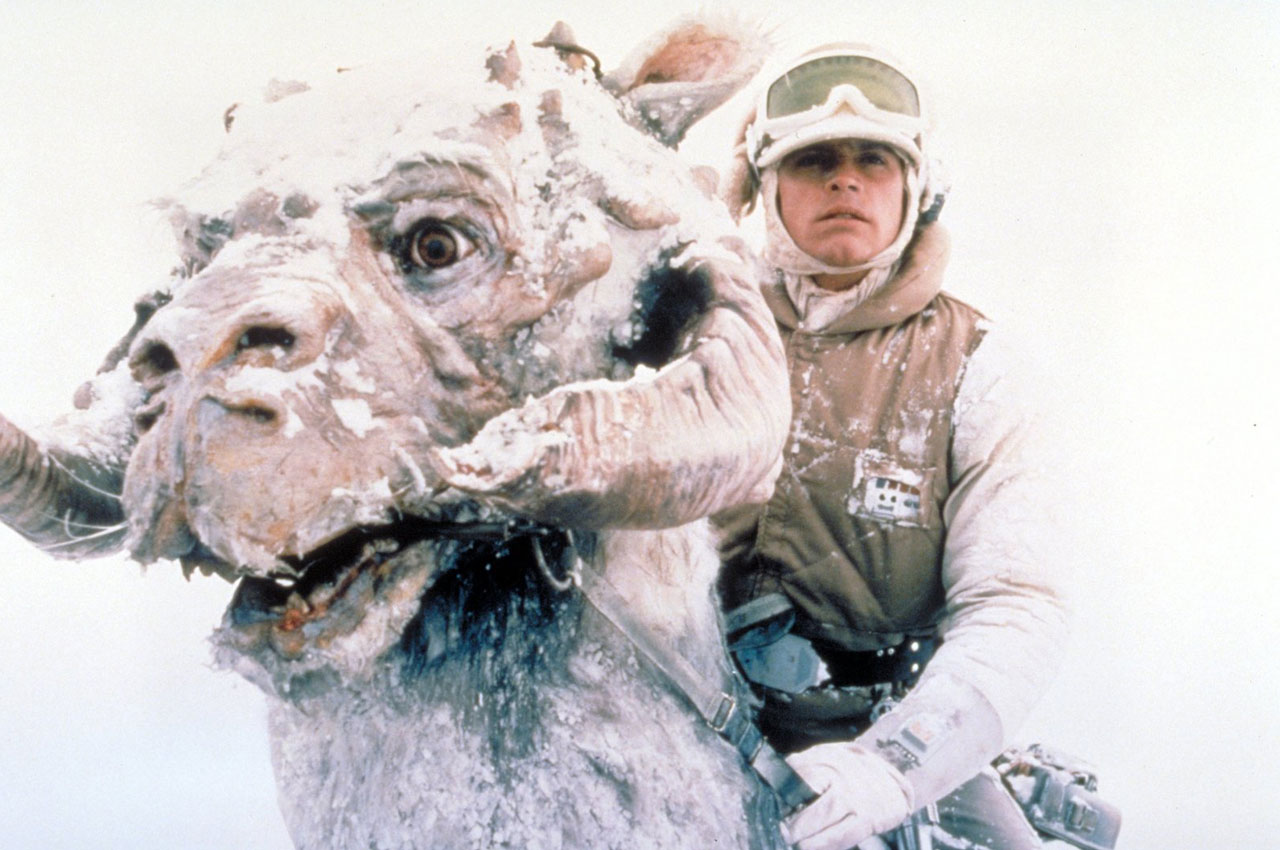 Luke and his Tauntaun