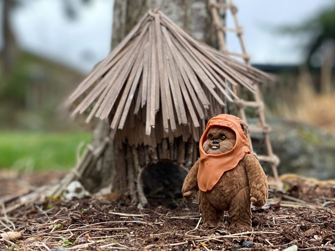 "Ewok ""Fairy"" House"
