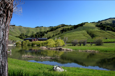 Ewok Lake at Skywalker Ranch