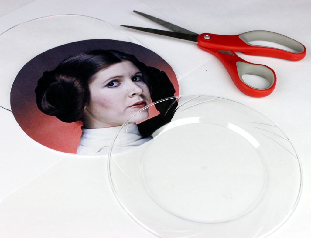 leia plate craft