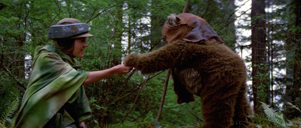 Return of the Jedi - Leia and Wicket