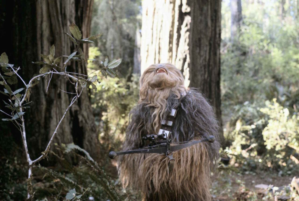 Chewbacca-on-Endor