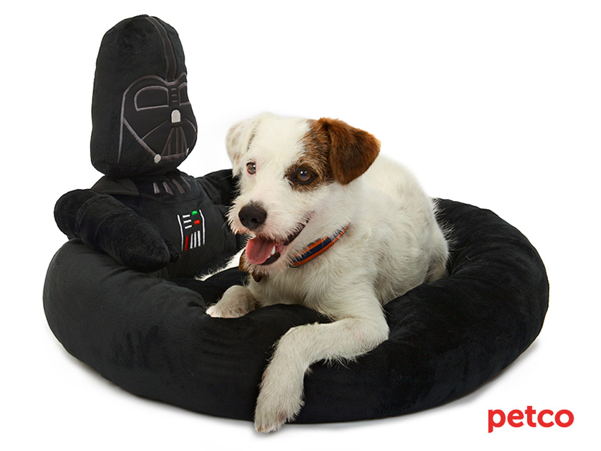 Petco S Star Wars Pet Fans Collection For Sith Tzus Jedi Javanese