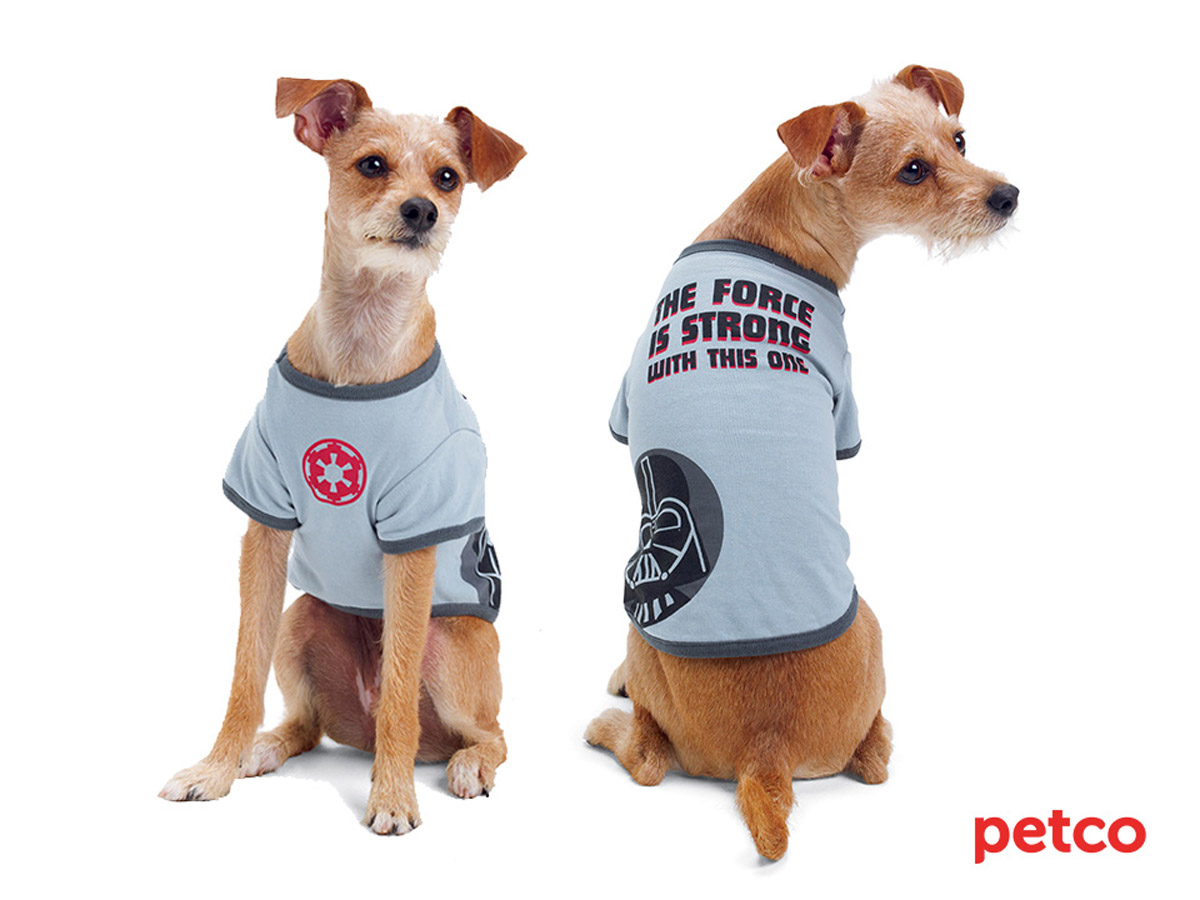 Petco's Star Wars Pet Fans Collection: For Sith Tzus, Jedi ...
